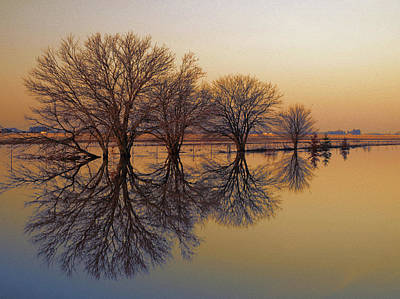 Photograph - Upon Reflection by Tom Druin
