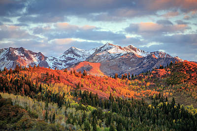 Photograph - Upper American Fork Canyon by Johnny Adolphson
