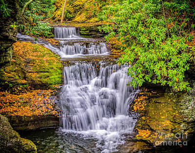 Photograph - Upper Dingman Falls by Nick Zelinsky