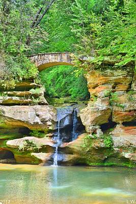 Photograph - Upper Falls At Old Man's Gorge Vertical by Lisa Wooten