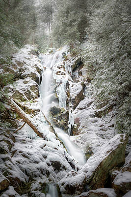 Photograph - Upper Falls At Race Brook by Bill Wakeley