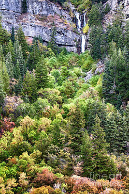 Photograph - Upper Falls Provo Canyon by David Millenheft