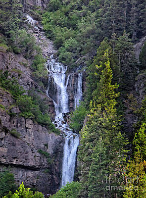 Photograph - Upper Falls Provo Utah by David Millenheft
