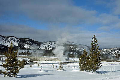 Photograph - Upper Geyser Basin Area by Cindy Murphy - NightVisions