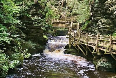 Photograph - Upper Gorge At Bushkill Falls by Karen Silvestri