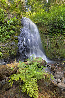 Stream Photograph - Upper Mccord Creek Falls by David Gn