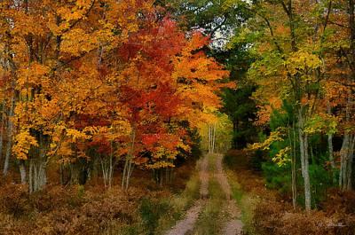 Photograph - Upper Peninsula Magic by Joe Bonita