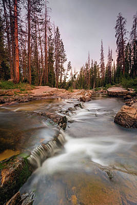 Photograph - Upper Provo River by Johnny Adolphson