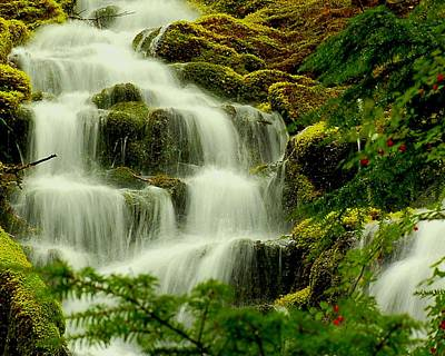 Mckenzie Pass Photograph - Upper Proxy Falls by Scott Gould