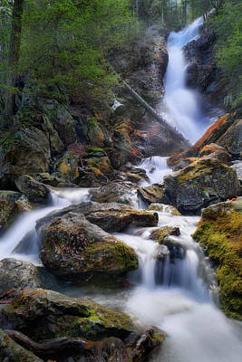 Photograph - Upper Race Brook Falls 2017 by Bill Wakeley