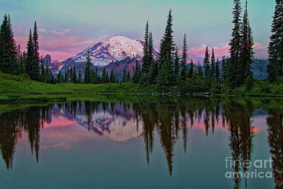 Photograph - Upper Tipsoo At Mt. Rainier by Sonya Lang