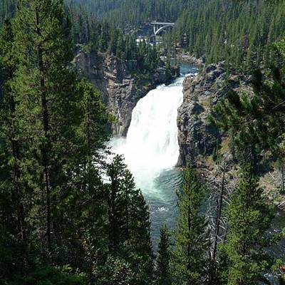 Photograph - #upperfalls #yellowstonenationalpark by Patricia And Craig