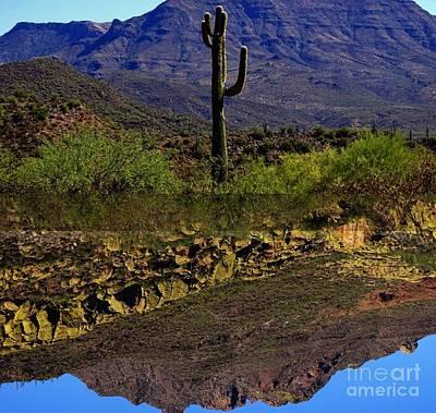 Photograph - Upside Down by Deniece Platt