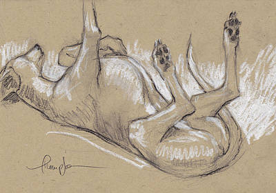 Lazy Dog Drawing - Upside Hound 3 by Tracie Thompson