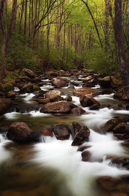 Photograph - Upstream by Reid Northrup