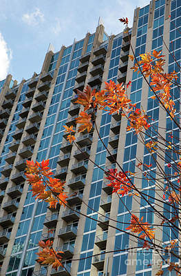 Photograph - Uptown Charlotte In Autumn by Kevin McCarthy