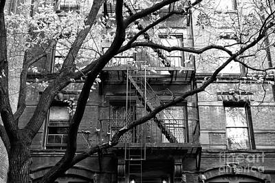 Nyc Fire Escapes Photograph - Urban Jungle In The Village by John Rizzuto