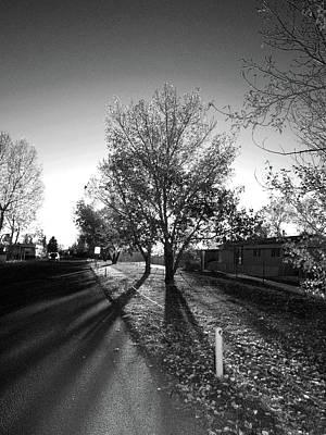 Photograph - Urban Shadows by Elisabeth Dubois