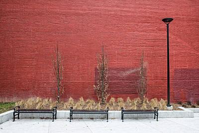 Photograph - Urban Spring by Claudio Bacinello