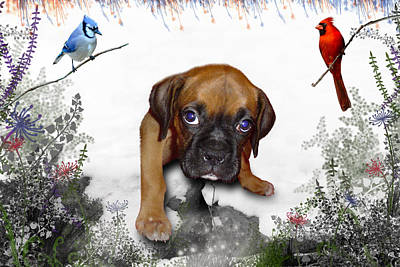 Bluejay Digital Art - Ursula Uma And The Underdog by Julie L Hoddinott