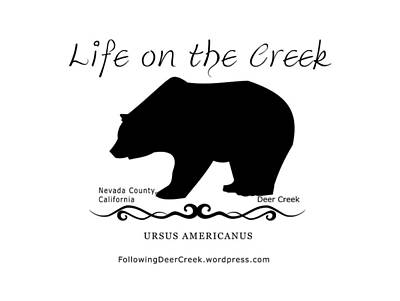 Digital Art - Ursus Americanus - Black Text by Lisa Redfern