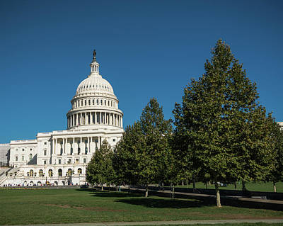 Photograph - Us Capitol Trees Washington Dc by Lawrence S Richardson Jr