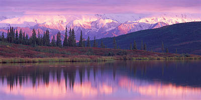 Snow-covered Landscape Photograph - Usa, Alaska, Denali National Park by Panoramic Images