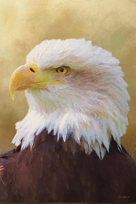 Painting - Usa Bald Eagle - Painting by Ericamaxine Price