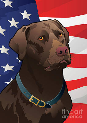 Chocolate Labrador Retriever Digital Art - Usa Chocolate Lab by Joe Barsin