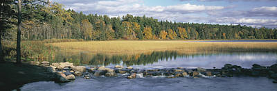 Itasca State Park Photograph - Usa, Minnesota, Itasca State Park, View by Panoramic Images
