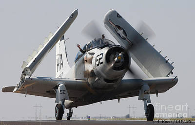 Photograph - Usaf Douglas A1 A  Skyraider by Antoine Roels
