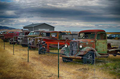 Photograph - Used Trucks by Bill Dutting