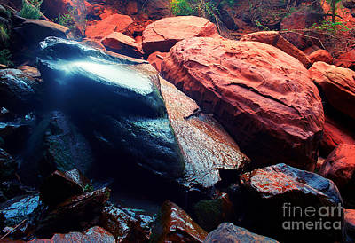 Photograph - Utah - Emerald Pool Boulders by Terry Elniski