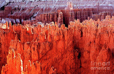Photograph - Utah - Bryce Canyon National Park - Queens Garden 7 by Terry Elniski