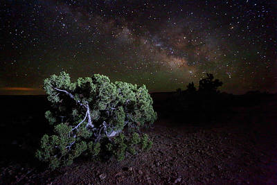 Light Paint Photograph - Utah Desert Sky by David Andersen