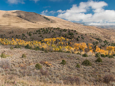 Photograph - Utah High Desert Autumn by Joshua House