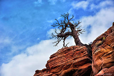 Photograph - Utah Juniper On The Cliffs by Expressive Landscapes Fine Art Photography by Thom
