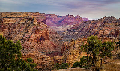 Photograph - Utah's Little Grand Canyon Horizontal by TL Mair