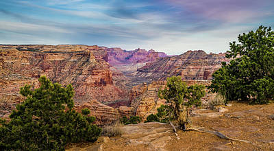 Photograph - Utah's Little Grand Canyon Panoramic by TL Mair
