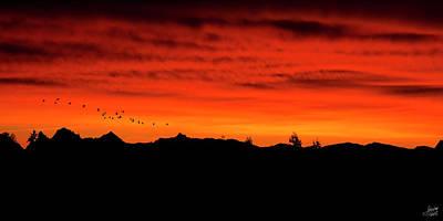 Photograph - v2. Firey Sunrise by Lisa Knechtel