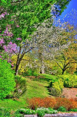 Photograph - Va Country Roads - Spring Has Sprung - On The Grounds Of The Natural Bridge, Rockbridge County by Michael Mazaika