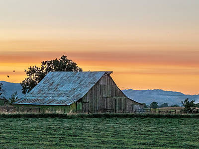 Photograph - Vaca Barn by Bill Gallagher