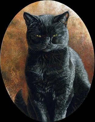 Cat Painting - Vader - Black Corners by Cara Bevan