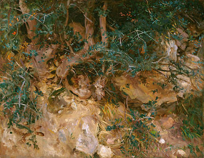 Tree Roots Art Painting - Valdemosa - Majorca - Thistles And Herbage On A Hillside by John Singer Sargent