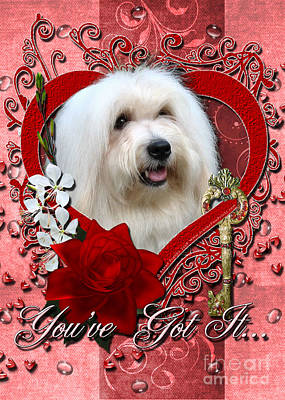 Valentines - Key To My Heart Coton De Tulear Art Print by Renae Laughner
