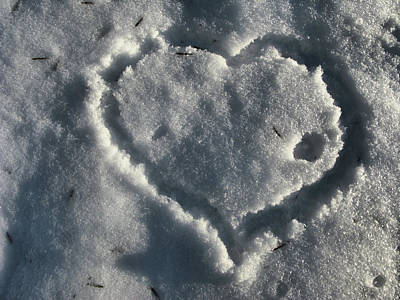 Photograph - Valentine's Day - Cold Heart by Daliana Pacuraru