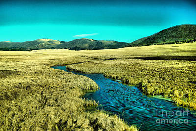 On Trend At The Pool - Vallas Caldera  by Jeff Swan