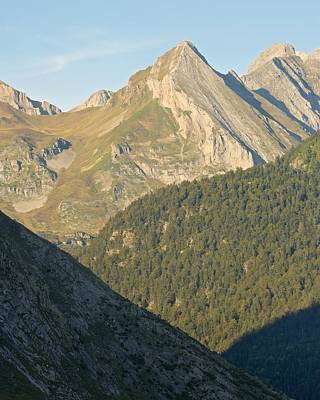 Photograph - Vallee D'ossau by Stephen Taylor