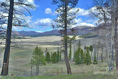 Photograph - Valles Caldera New Mexico by Third Eye Perspectives Photographic Fine Art