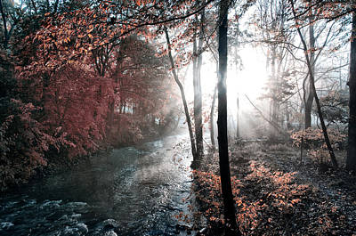 Valley Creek Sunrise Print by Bill Cannon